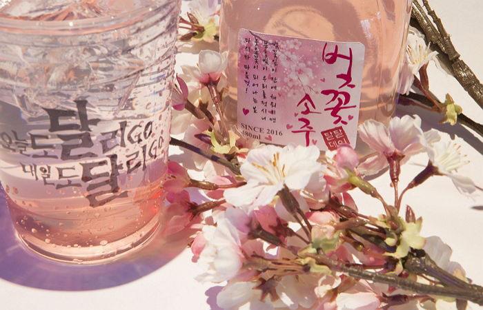 韩国酒春季大换装
