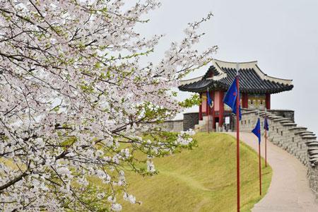 水原华城,重访在春暖花开时