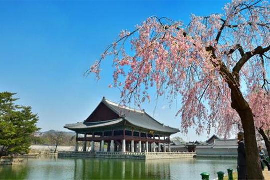 景福宫庆会楼免费开放