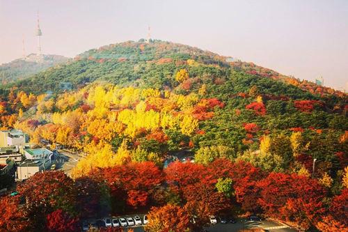 红枫正当时,首尔八大最美赏枫地