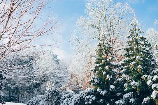 浪漫的冬季韩国之旅