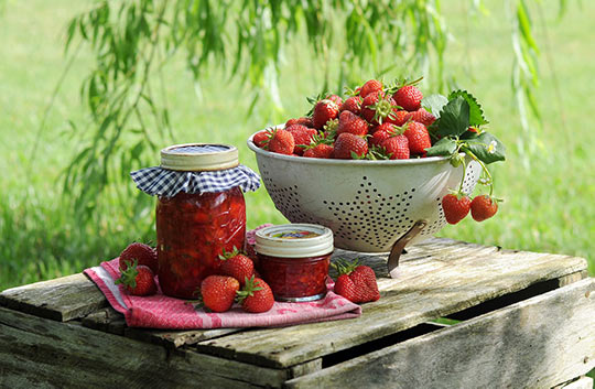 草莓季,咖啡厅去哪?