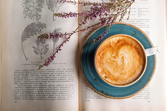植树节的清新咖啡厅之旅