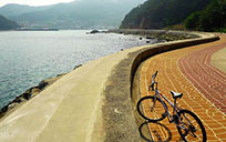 细数韩国风景绝美的自行车道