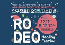 狎鸥亭罗德奥街•Healing Festival