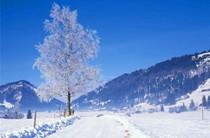 韩国冬季家族旅行地推荐