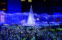 2016韩国冬季灯火庆典大盘点