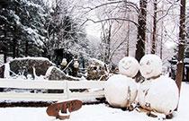 韓國首爾周邊冬季賞雪之旅
