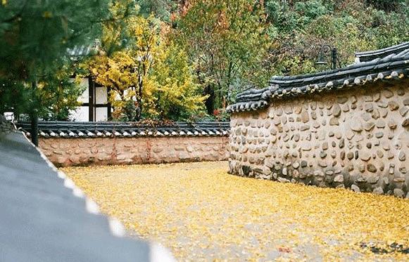 細數韓國全州必去旅游景點