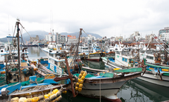 韩国的那不勒斯:统营