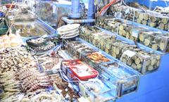 【海鲜吃不停】首尔海产天堂——鹭梁津水产市场
