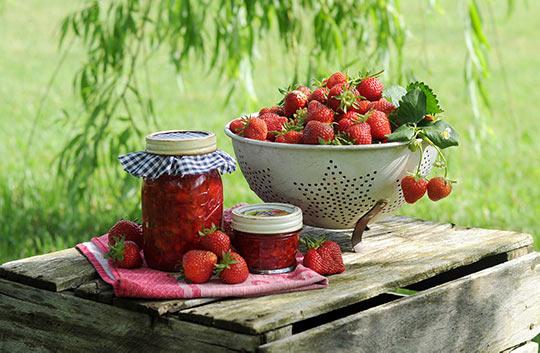 【grass】莓季,咖啡厅往哪?