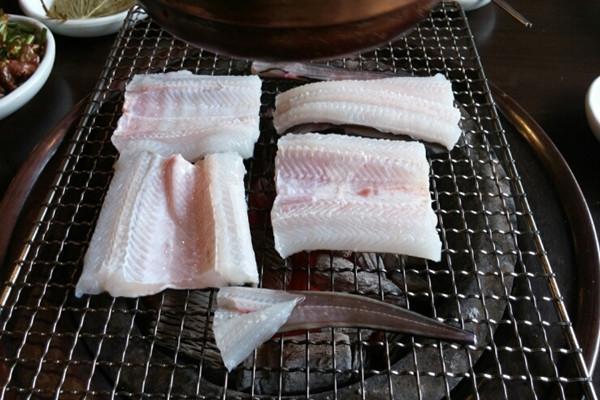 名古屋野生海鳗专营店