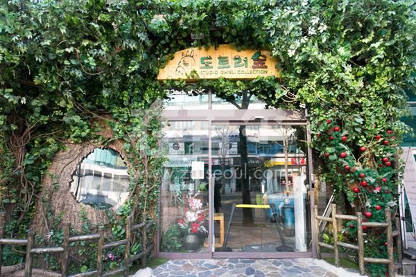 橡树林(弘大店)