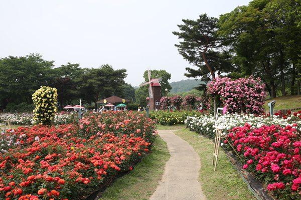 首尔大公园
