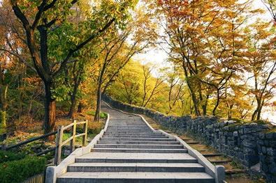 图为韩国著名景区秋季枫叶景观