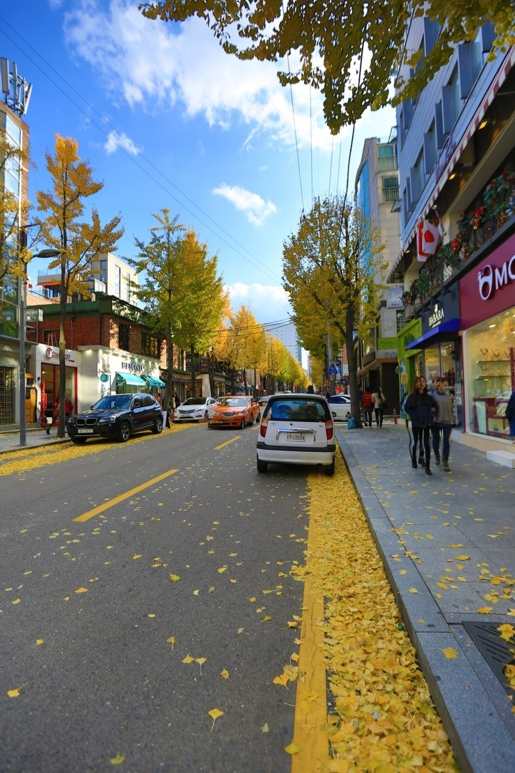 最适合秋季漫步的首尔街道