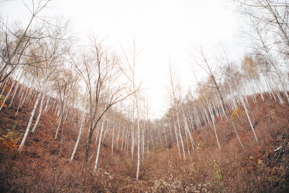 冬季韩国旅游景点推荐