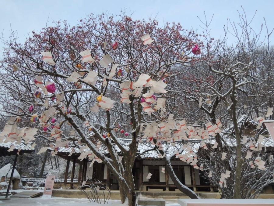 韩国民俗村冬季活动