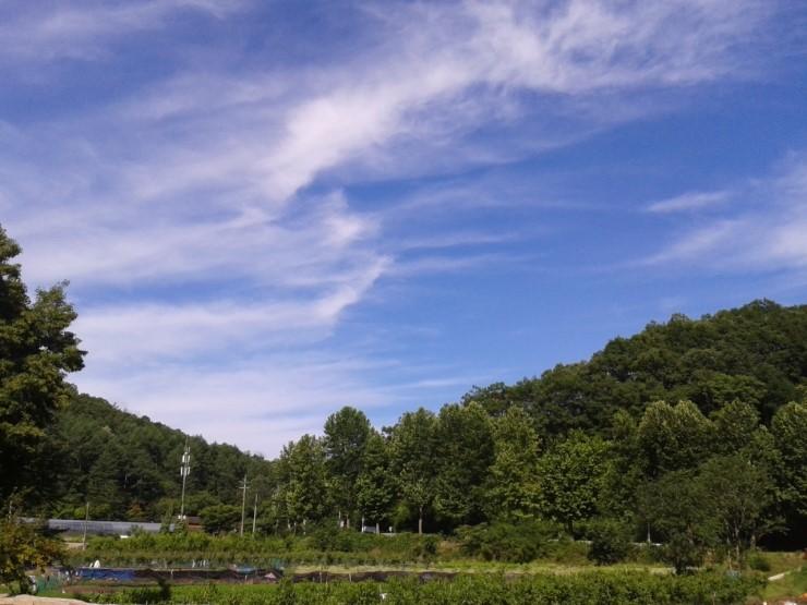 大田周围的环城山道分成12段,在这里可以寻到美丽的森林公园,古老神秘图片