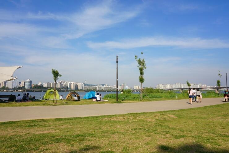 汝矣岛汉江公园的正确玩法